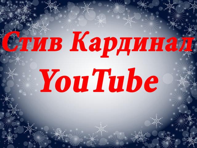 YouTube комик Стив Кардинал: над кем смеётся чернобородый парень в купальнике?