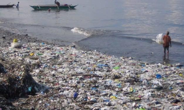 Пластиковые бутылки – экологическая опасность