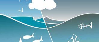 мусор в мировом океане