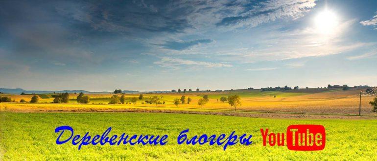 Деревенский блоггер