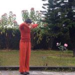 Йога сукшма вьяяма